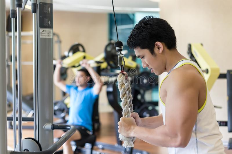 Jeune homme fort exerçant le refoulement de triceps au câble m de corde image libre de droits