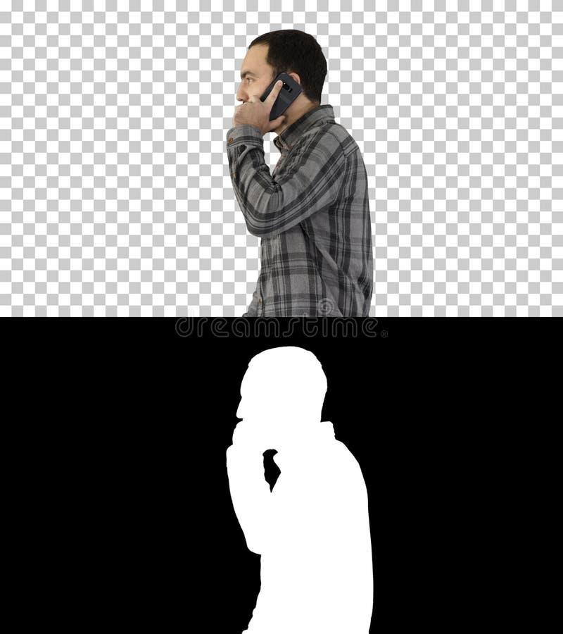 Jeune homme frais avec la barbe marchant et parlant avec le téléphone portable, Alpha Channel images stock
