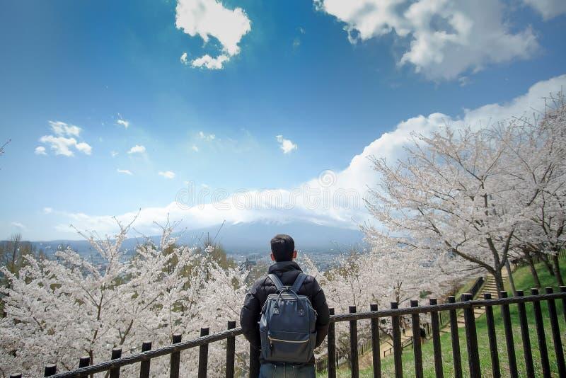 Jeune homme heureux voyageant avec beaux Cherry Blossom et mont Fuji roses au secteur de temple rouge de pagoda de Chureito Print images stock