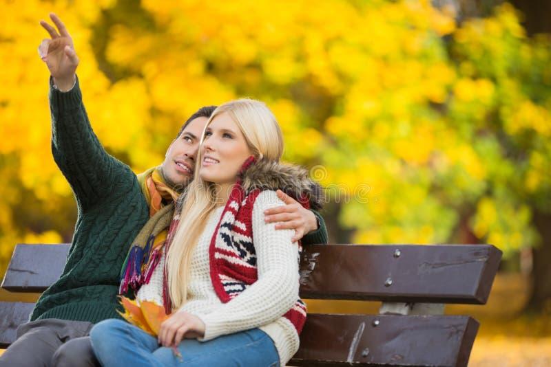 Jeune homme montrant quelque chose à la femme tout en faisant des gestes dans le parc pendant l'automne photos libres de droits