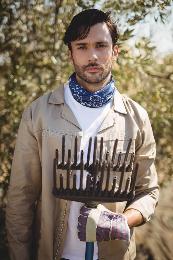 Jeune homme sérieux avec le râteau se tenant à la ferme olive image libre de droits