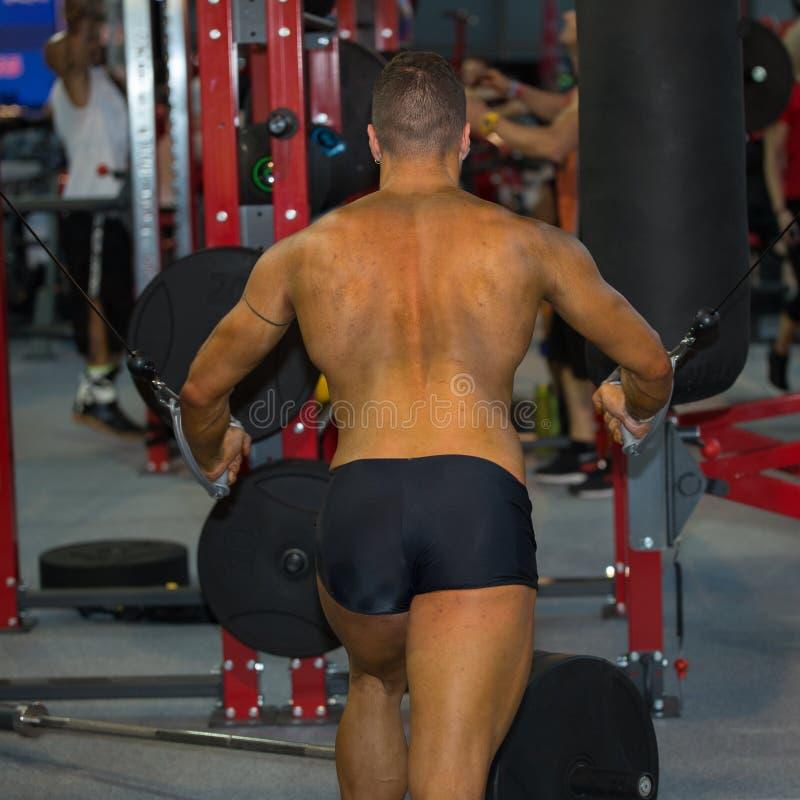 Jeune homme s'exerçant avec la machine de forme physique au gymnase : Vue arrière photos stock