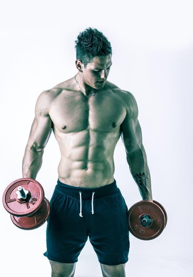 Jeune homme sans chemise musculaire exerçant le biceps image libre de droits
