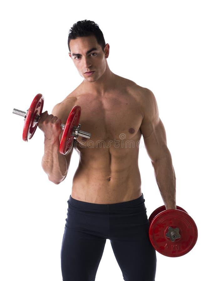 Jeune homme sans chemise musculaire exerçant le biceps avec des haltères photos stock