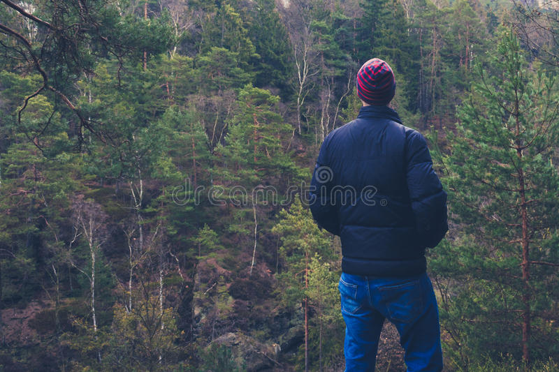 Jeune homme se tenant en nature de forêt regardant la distance, photo stock
