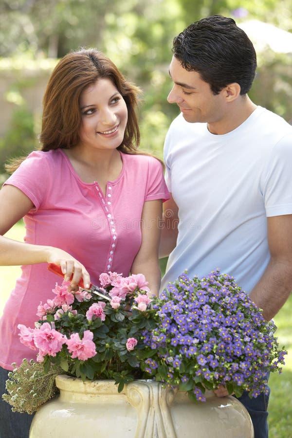 Jeune jardinage de couples photos stock