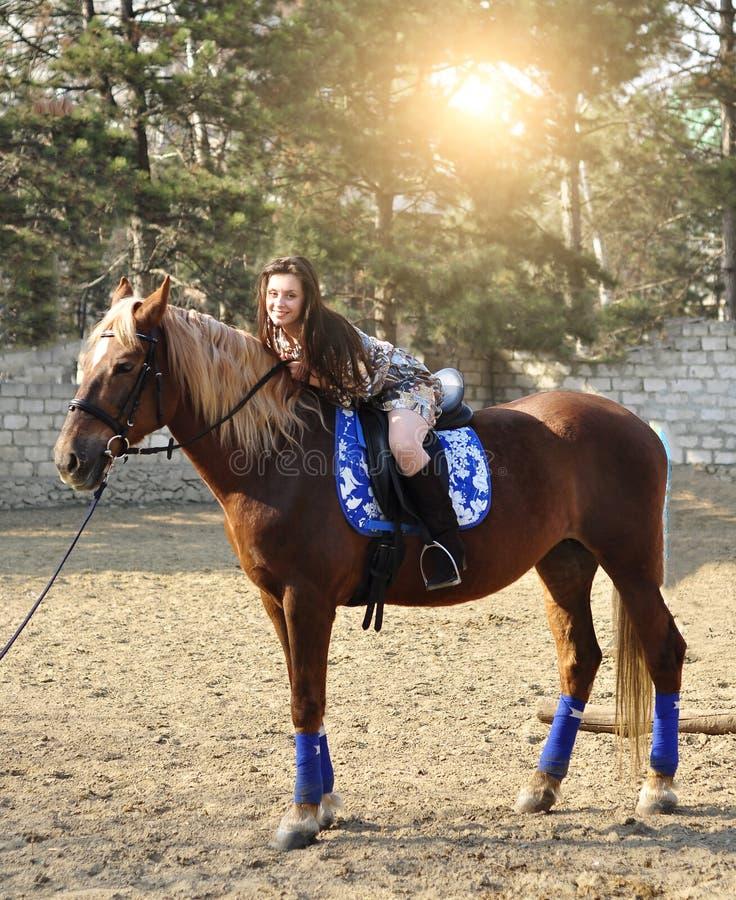 Jeune joli cheval d'équitation de brune extérieur images stock