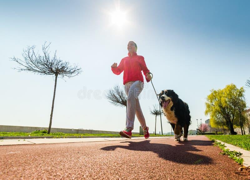 Jeune joli fonctionnement de fille extérieur avec son chien de montagne de Bernese image stock