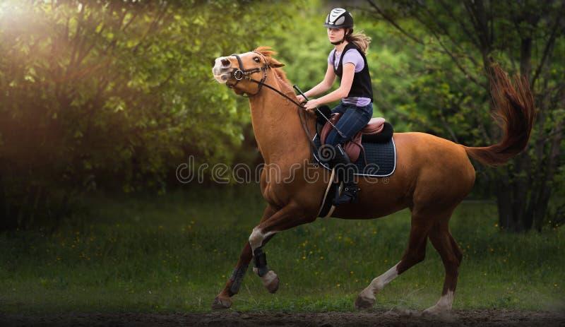 Jeune jolie fille montant un cheval photo stock