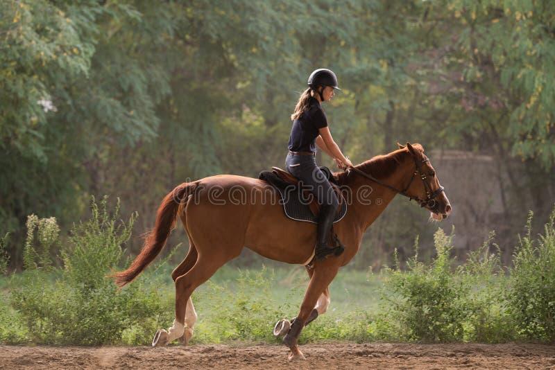 Jeune jolie fille montant un cheval avec les feuilles rétro-éclairées derrière photographie stock