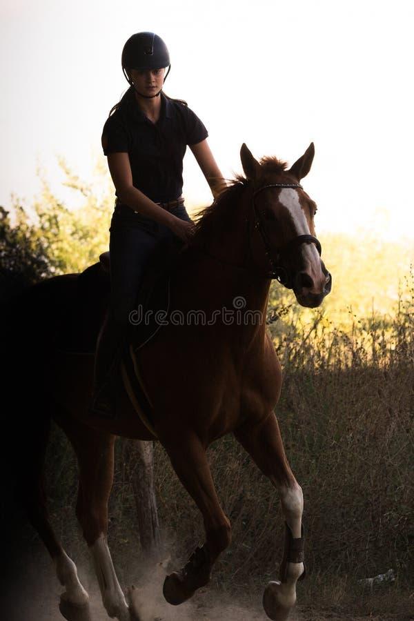 Jeune jolie fille montant un cheval avec les feuilles rétro-éclairées derrière photos libres de droits