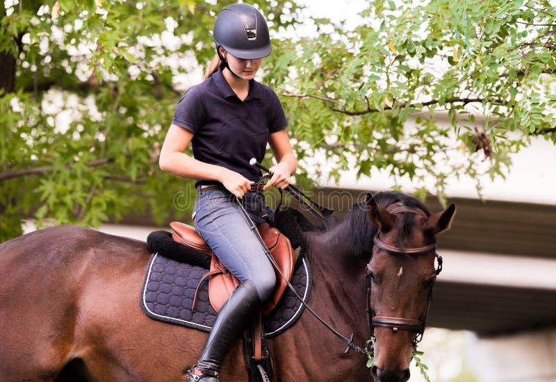 Jeune jolie fille montant un cheval avec les feuilles rétro-éclairées derrière images libres de droits