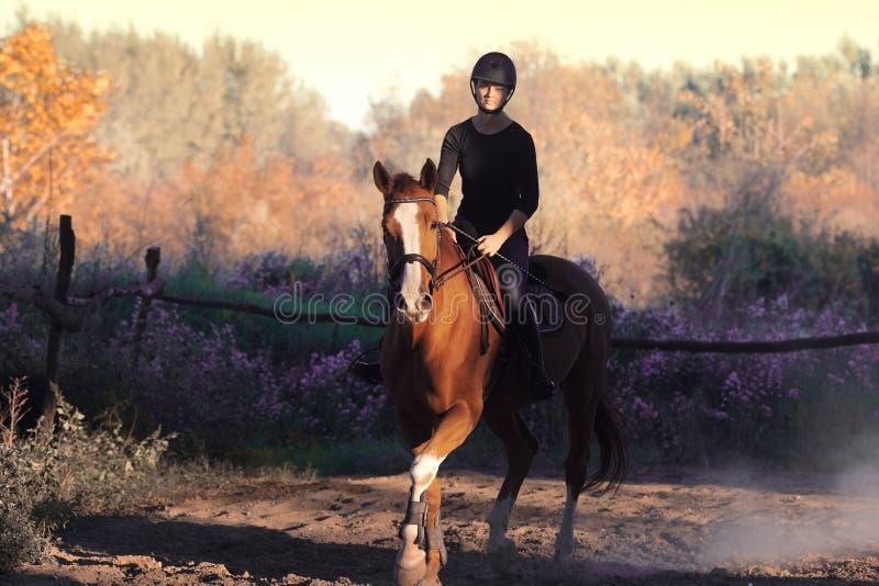 Jeune jolie fille montant un cheval avec les feuilles rétro-éclairées derrière image stock