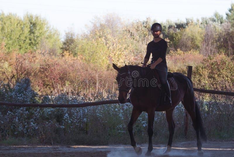 Jeune jolie fille montant un cheval avec les feuilles rétro-éclairées derrière photographie stock libre de droits