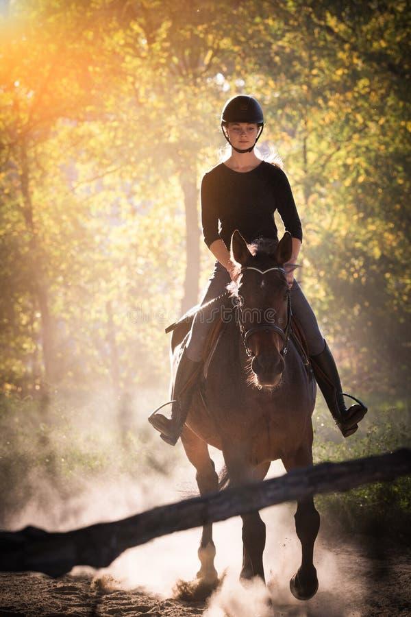 Jeune jolie fille montant un cheval avec les feuilles rétro-éclairées derrière image libre de droits