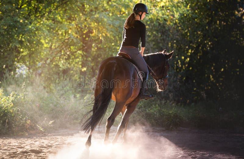 Jeune jolie fille montant un cheval avec les feuilles rétro-éclairées derrière photos stock