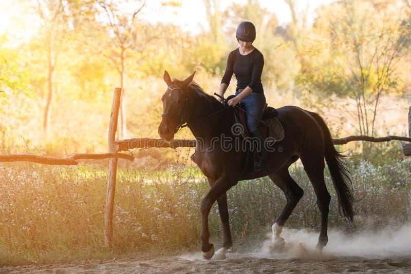 Jeune jolie fille montant un cheval avec les feuilles rétro-éclairées derrière photo libre de droits
