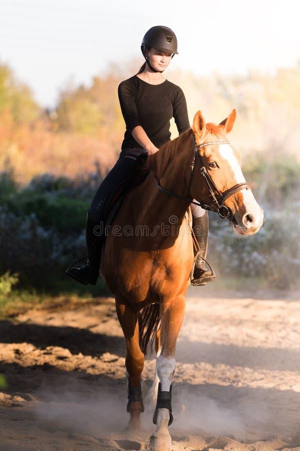 Jeune jolie fille - montant un cheval avec les feuilles rétro-éclairées derrière photographie stock libre de droits