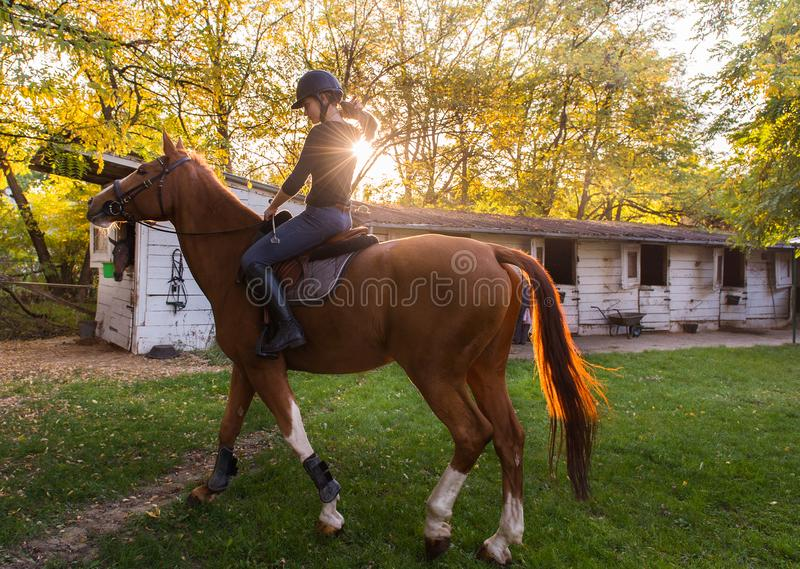 Jeune jolie fille - montant un cheval avec les feuilles rétro-éclairées derrière photographie stock