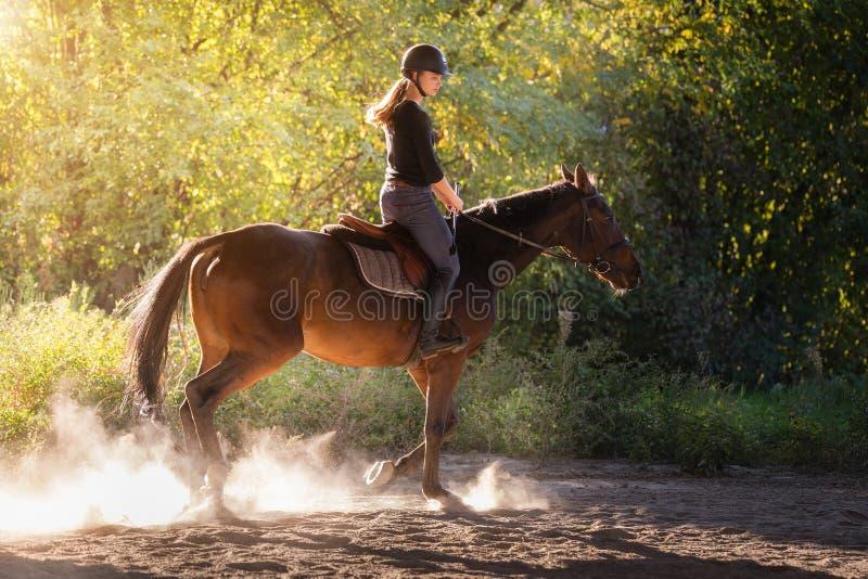Jeune jolie fille - montant un cheval avec les feuilles rétro-éclairées derrière image stock
