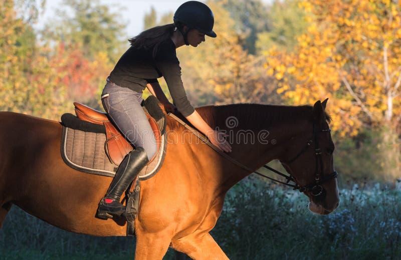 Jeune jolie fille - montant un cheval avec les feuilles rétro-éclairées derrière images stock