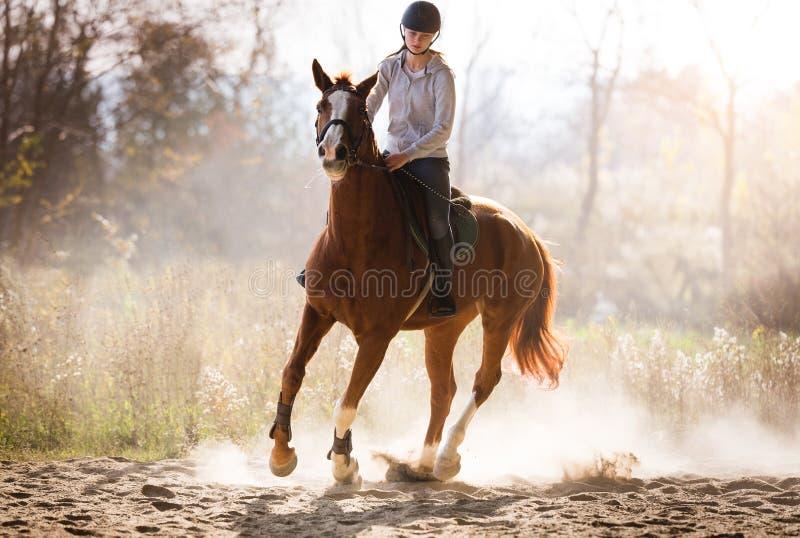 Jeune jolie fille - montant un cheval avec les feuilles rétro-éclairées derrière images libres de droits