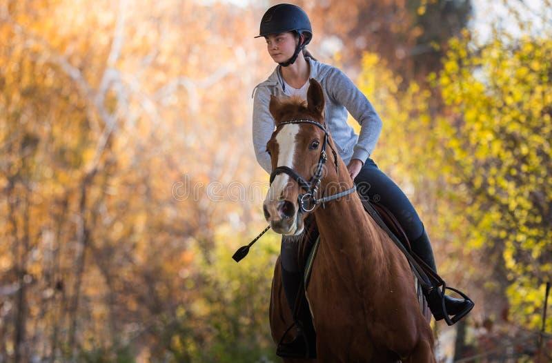 Jeune jolie fille - montant un cheval avec les feuilles rétro-éclairées derrière photos stock