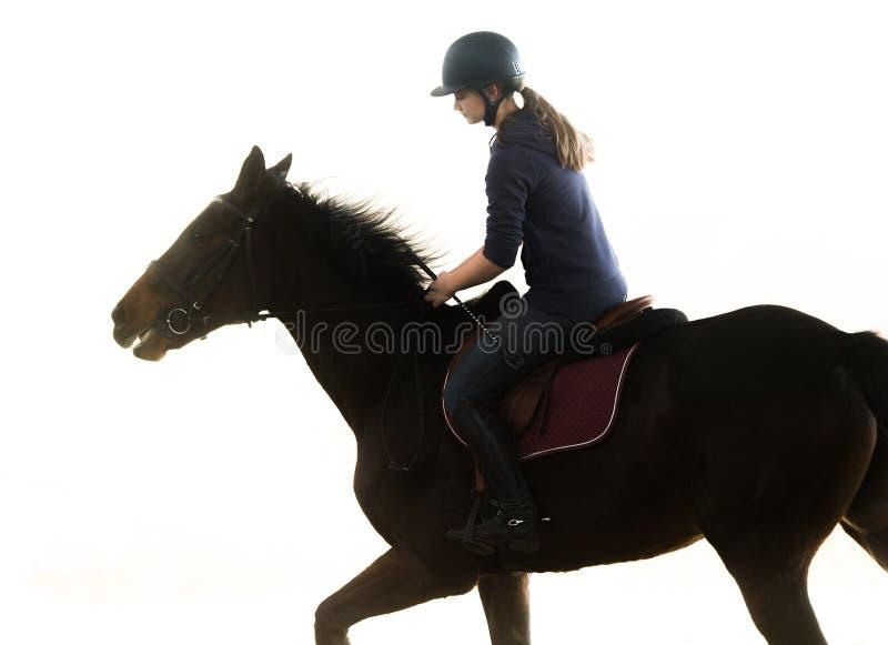 Jeune jolie fille - monte d'un cheval photo stock