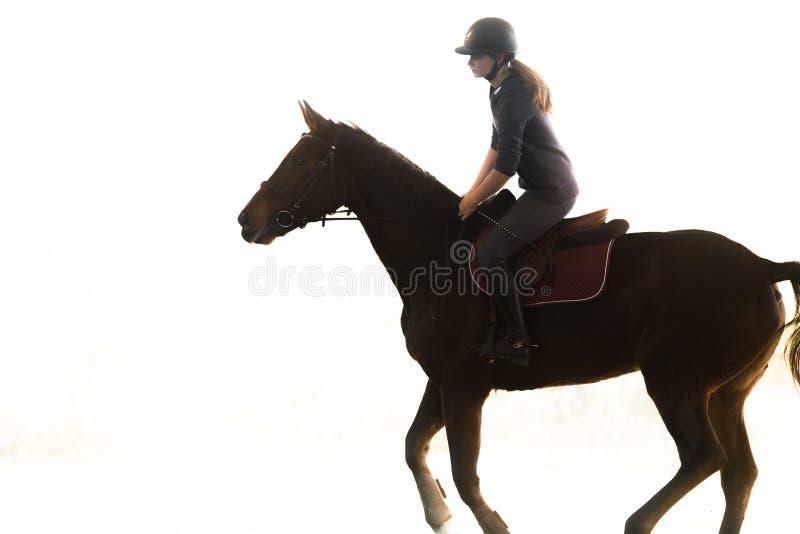 Jeune jolie fille - monte d'un cheval photos stock