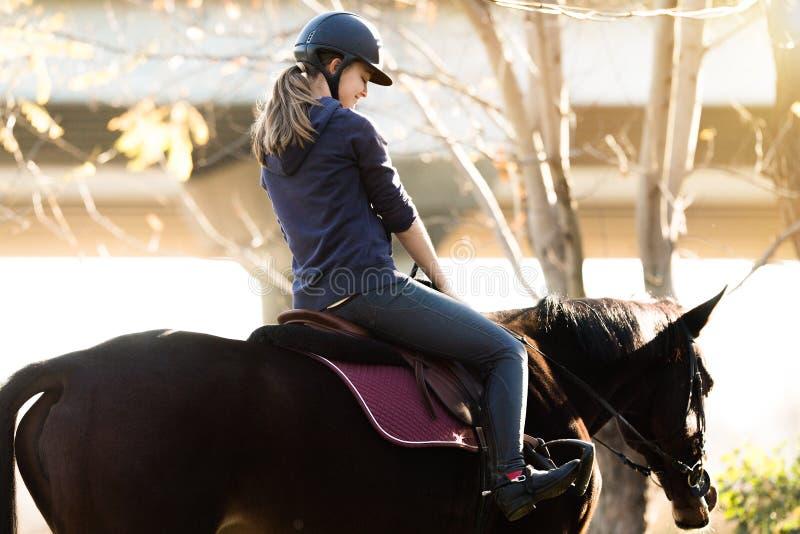 Jeune jolie fille - monte d'un cheval dans le matin d'hiver photos stock