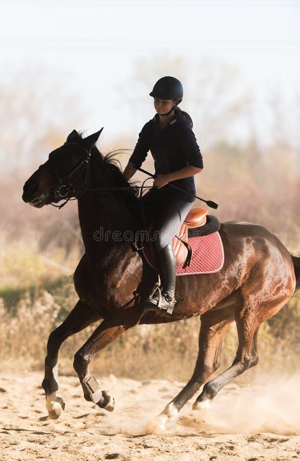 Jeune jolie fille - monte d'un cheval dans le matin d'hiver image libre de droits