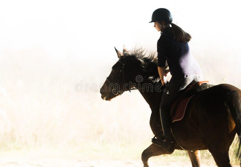 Jeune jolie fille - monte d'un cheval dans le matin d'hiver photo libre de droits