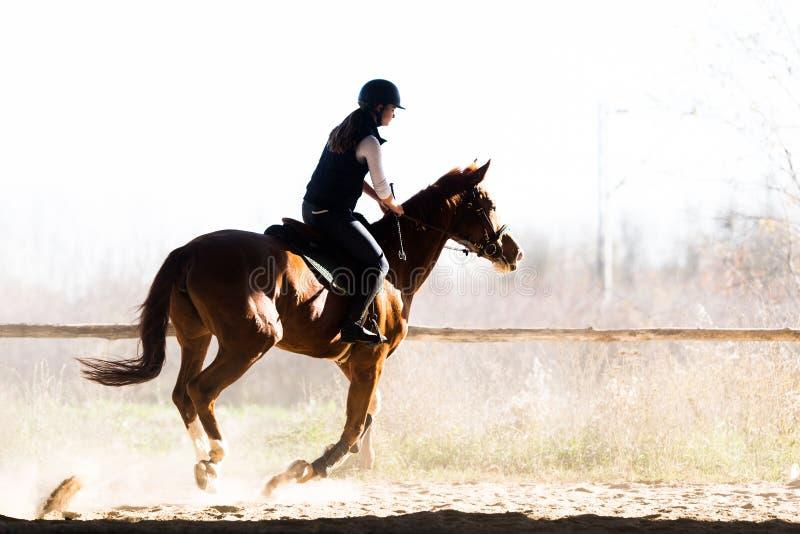 Jeune jolie fille - monte d'un cheval dans le matin d'hiver photos libres de droits