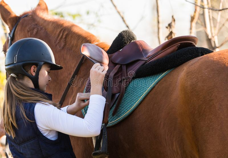 Jeune jolie fille préparant le cheval pour la monte image libre de droits