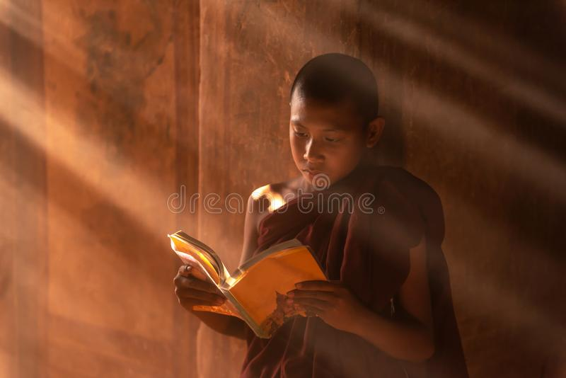 Jeune lecture bouddhiste de moine de novice en Bagan Myanmar photos stock