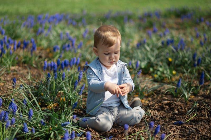 Jeune m?re jouant et parlant avec un fils de b?b? gar?on sur une jacinthe de raisin de champ de muscari au printemps - jour ensol photo stock