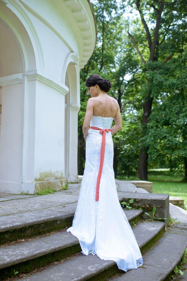 Jeune mariée de beauté dans la robe de mariée avec le voile de dentelle dans la nature photos stock