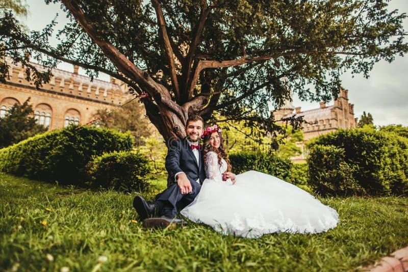 Jeune mariée et marié près de vieil arbre images stock