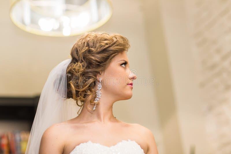 Download Jeune Mariée Magnifique Dans La Robe De Mariage Avec Des Bijoux De Diamant Image stock - Image du languettes, luxe: 77156891