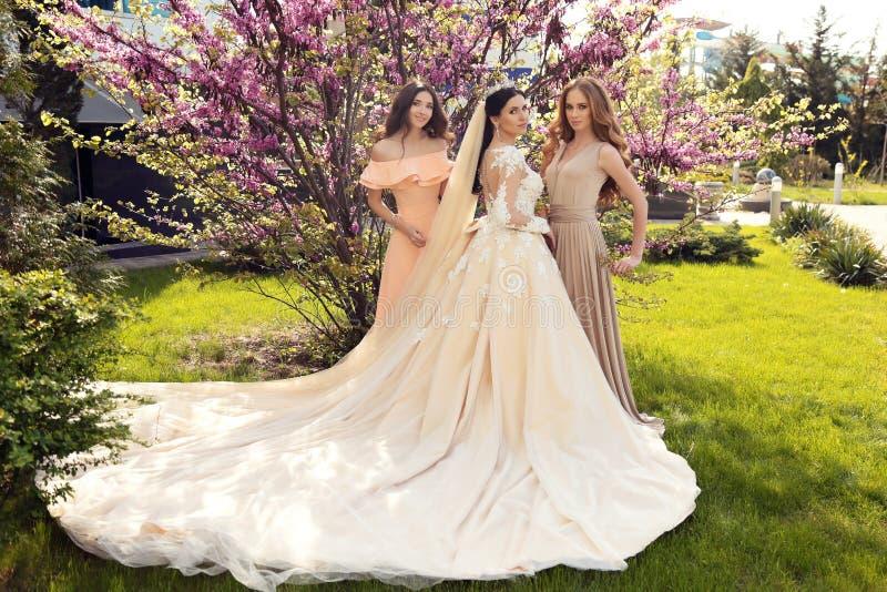 Jeune mariée magnifique dans la robe de mariage luxueuse, posant avec de belles demoiselles d'honneur dans des robes élégantes photos stock