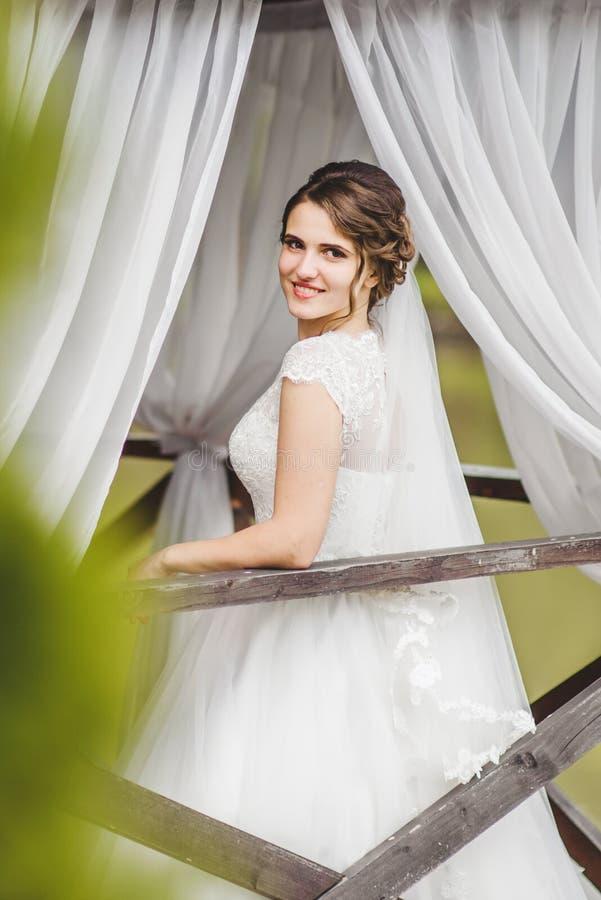 Jeune mariée posant sur le pilier au lac image libre de droits