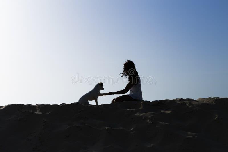 Jeune petit chien mignon heureux ayant l'amusement à la plage ?t? vacances Animaux familiers dehors lifestyle photo stock