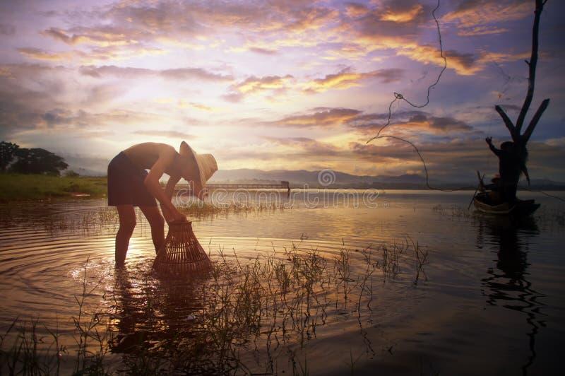 Jeune poisson d'eau douce asiatique de bâti de pêcheur en rivière de nature photos stock