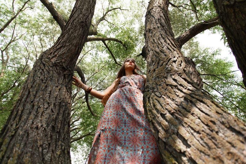 Jeune position hippie de femme près d'un vieil arbre image stock