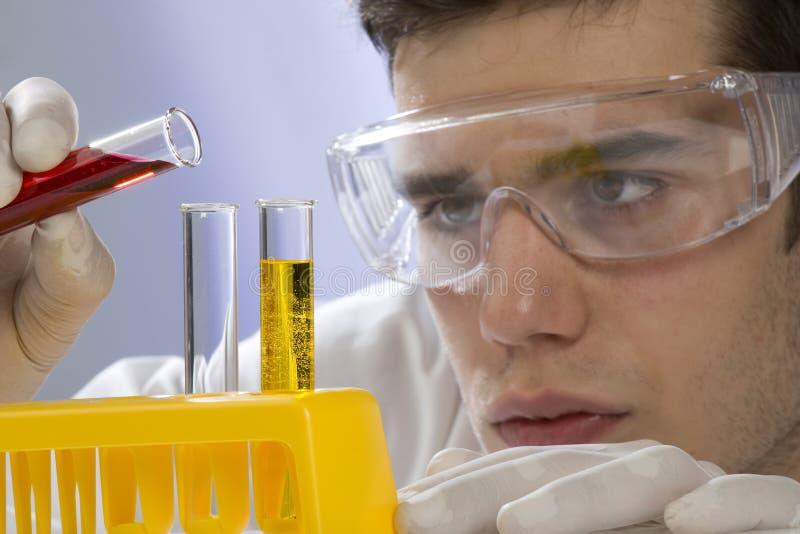 Jeune scientifique travaillant dans son laboratoire images libres de droits