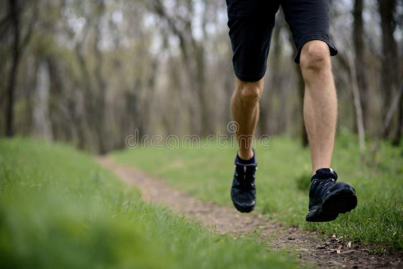 Jeune sportif courant le ressort Forest Trail dans le matin Les jambes se ferment vers le haut de la vue photo stock