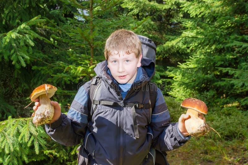 Jeune touriste avec le boletus deux dans une forêt impeccable images libres de droits
