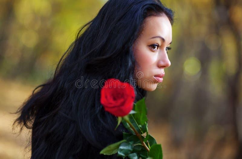 Jeune verticale de femme de brunette photos libres de droits