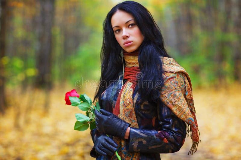 Jeune verticale de femme de brunette image libre de droits