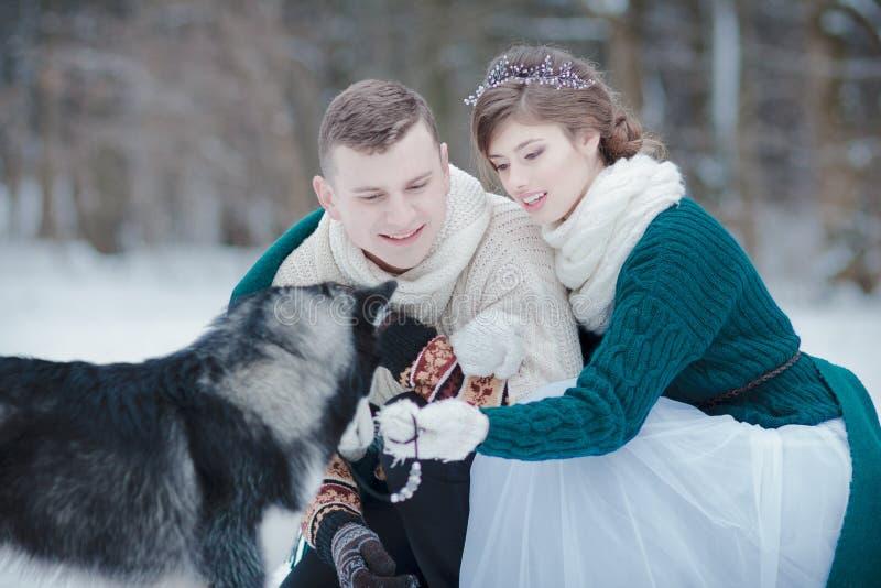 Jeunes adultes dans l'amour dans la forêt d'hiver avec le chien de traîneau sibérien photos libres de droits